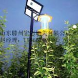 供应滕州生产销售太阳能杀虫灯
