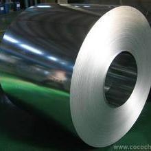 供应不锈钢卷板